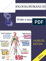 II Unidad Morfofisiologia III Completa Samuel Reyes (1)
