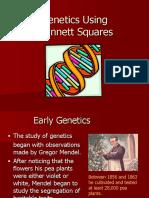 introduction to genetics  1