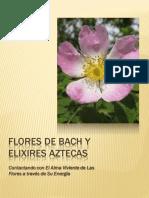 Flores de Bach y Elixires Aztecas