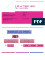 Infecciones de Las Vías Urinarias, Pielonefritis y Prostatitis