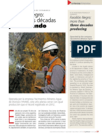 Nota a Farallon Negro.pdf