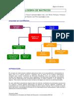 Algebra Matrices.pdf