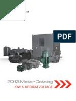 LVM Catalog 2013 Electric Motor