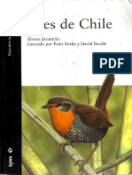 Aves chile