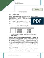 DECLARACION-IMPACTO AMBIENTAL.pdf