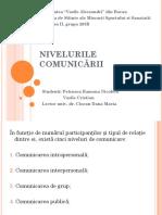 3. Nivelurile Comunicarii Petrusca EFS IFR II
