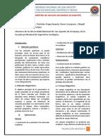 MAGNETOMETRO FLUXGATE x2.docx