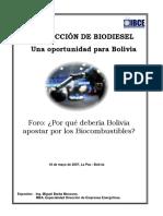 Por Que Bolivia Debe Apostar Por El Biodiesel-IBCE