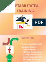 Adaptabilitatea in Training