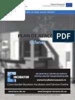 Plan de Afaceri Book (1)