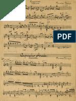 IMSLP200464-PMLP340750-RiBSms-234b_lagrima_facsimile.pdf