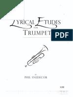 121258538-Lyrical-Studies.pdf