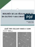 Biología de Las Células MDCK