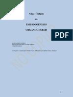todo sobre embriologia-atlas y demas.pdf