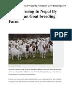 Himalayan Goat Breeding Farm Bungkot Gorkha nepal
