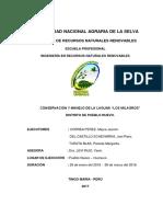 Concervacion y Manejo de La Laguna Los MilaGROS
