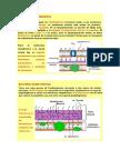 Revista Colombiana de Biotecnología