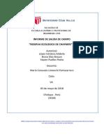 Informe de Campo Cultura Ambiental
