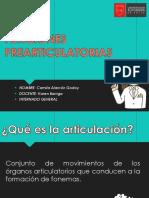 Funciones Prearticulatorias Seminario 2