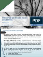 PPT Ppios Generales Contratos