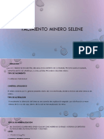 Minera Selene.pptxv