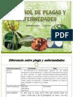 1. Control-de-Plagas-y-enfermedades completo=D.pptx