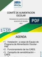 CAE 2018 Presentar