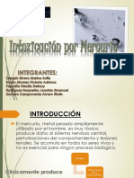 Intoxicacion Mercurio