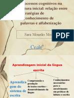 Palestra Sara Mourão Março.compressed