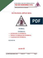 ENERGIA ecologia.docx