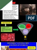 sinfrome hemolitico uremico