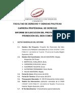 Ejecucion Del Proyecto Del Bien Comun Dsi II 2018 Final
