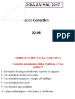 T3Conectivo.pdf