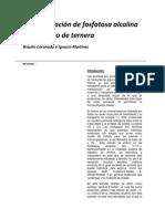 Fosfatasa-alcalina