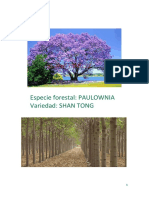 Cualidades de Paulownia