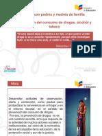 9. Presentación Taller Padres_Prevención Drogas