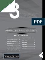 Biblia_Panorama Del NT