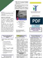 Indicaciones Lab. Control Prenatal