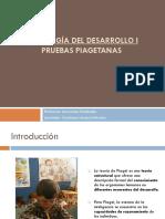 Pruebas Piagetanas 2014