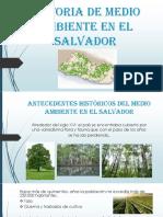 Historia de medio ambiente en el salvador.pptx