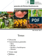Basidiomycota 2016
