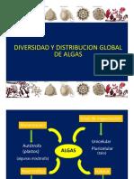 Clase Div. y Distribución Global de Algas 2016