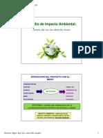 material EsIA.pdf