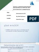 Determinantes de La DCI