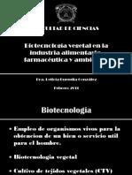 Biotecnologia Vegetal en La Industria Alimentaria Farmaceutica y Ambiental (Diapositivas)