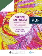 04_Burbujas_en_la_tierra_.pdf
