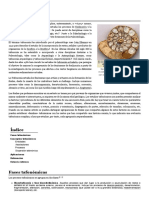 Tafonomía - Wikipedia, la enciclopedia libre