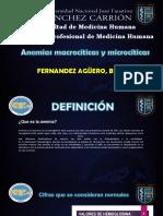 ANEMIA Macro y Micro