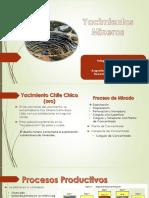 Yacimientos mineros (1)