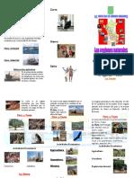 triptico-101130101114-phpapp01.pdf